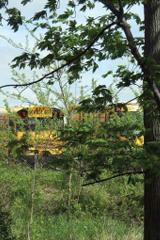 SERF-Dean-Transportation-buses-sm1